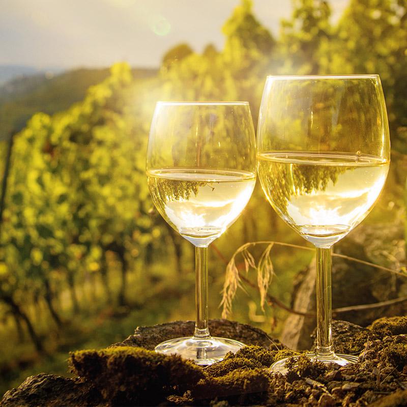 Federweißer Wein